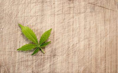 marques-marijuana-cannabis-uspto